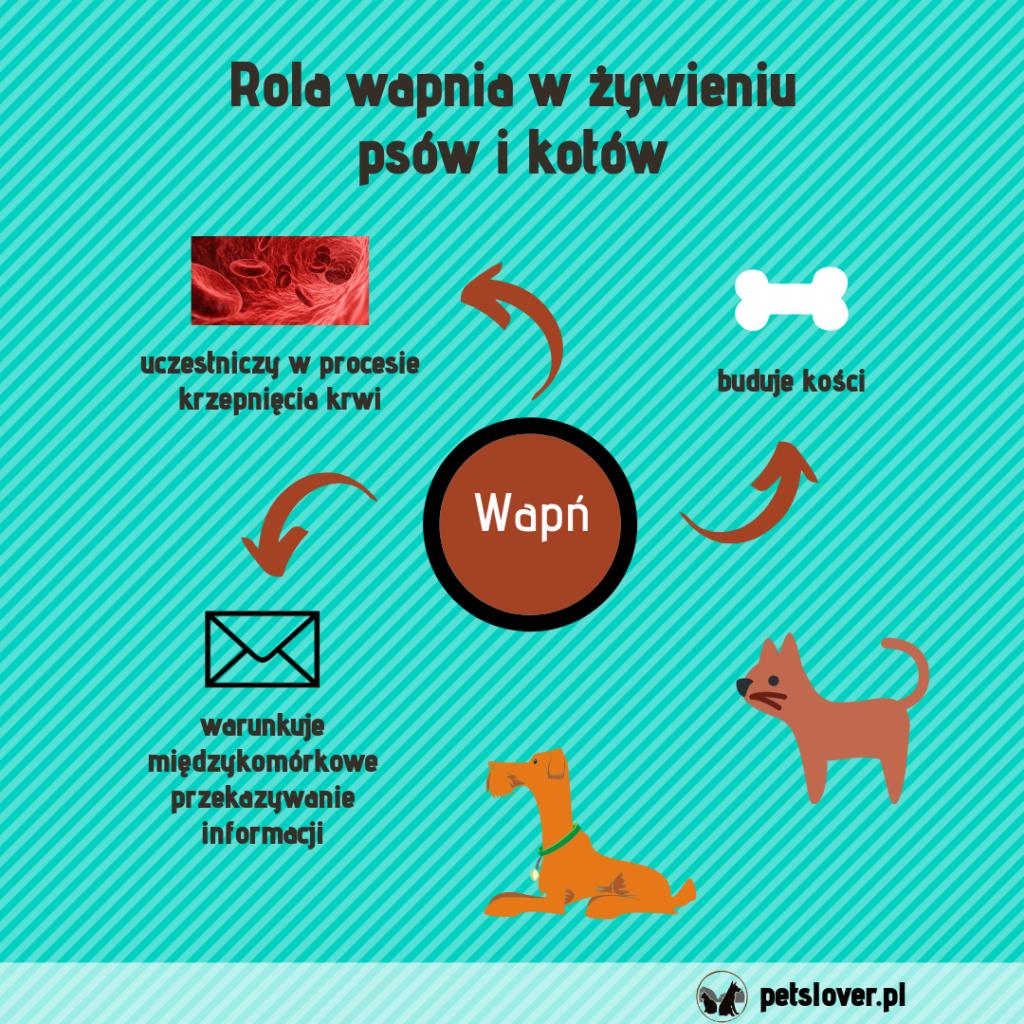 Rola wapnia w żywieniu psów i kotów