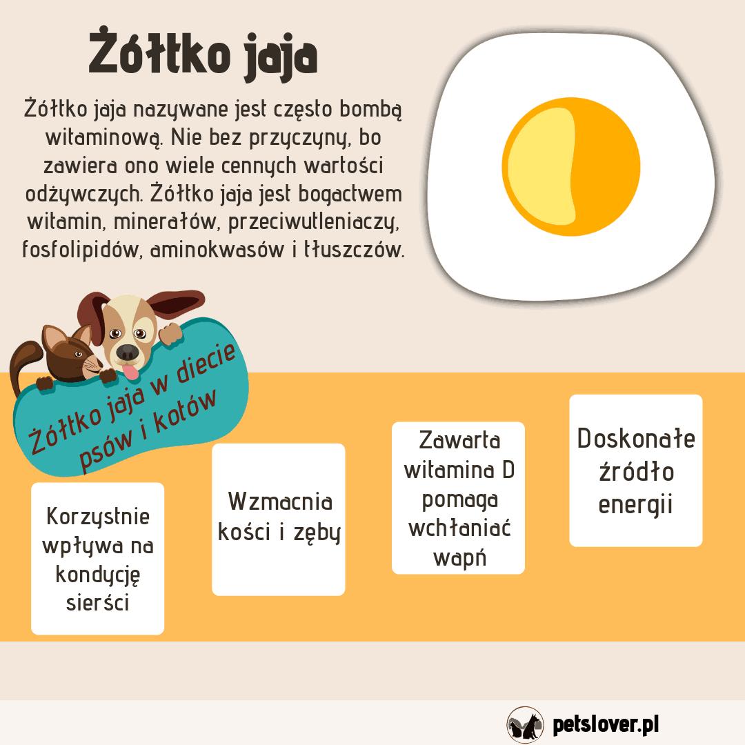 Korzyści stosowania żółtka jaja w diecie psów i kotów