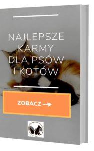 Darmowy ebook Najlepsze karmy dla psów i kotów