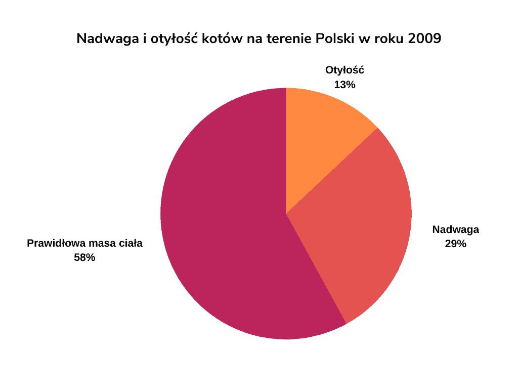 Otyłość kotów w Polsce w 2009 roku
