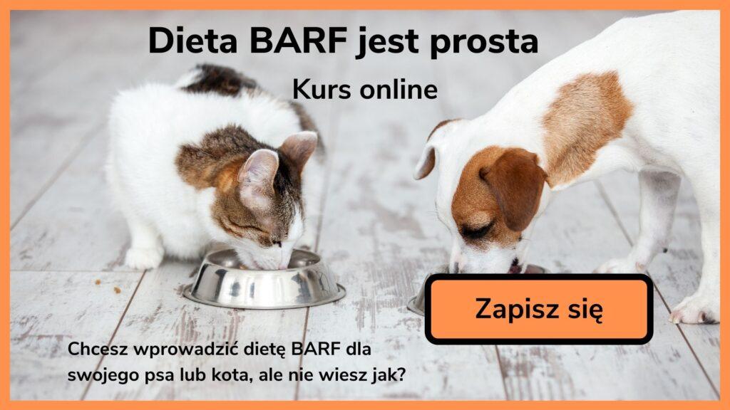 Kurs online Dieta BARF jest prosta